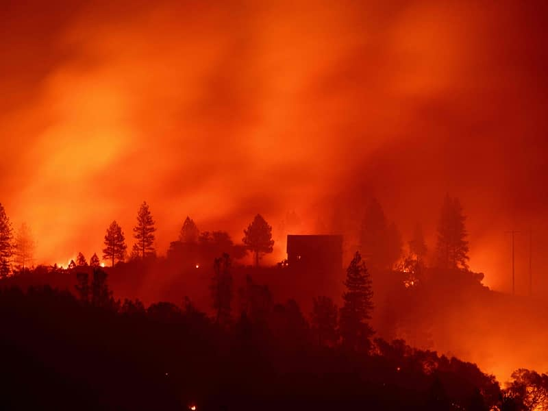 stop wildfire